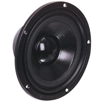 Basový-středový reproduktor 13 cm (5 quot;) 4 Ohm